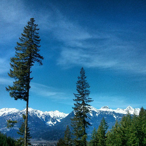 Some decent views from the trail we're using in both The Squamish50 & Survival Of The Fittest