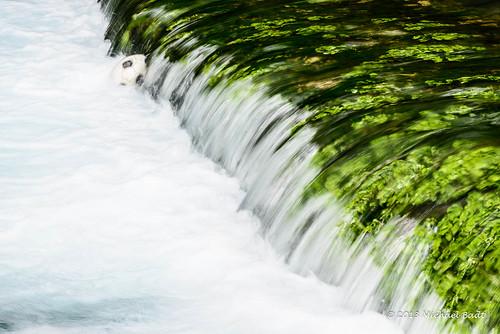 river israel il golan naturelandscape
