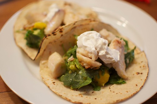 Tilapia Tacos with Mango and Arugula