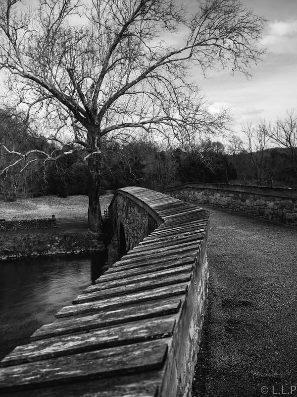 OMD & L.L.P Go to Antietam Battlefield