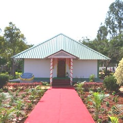Guruji Krishnananda's Holy Ashes