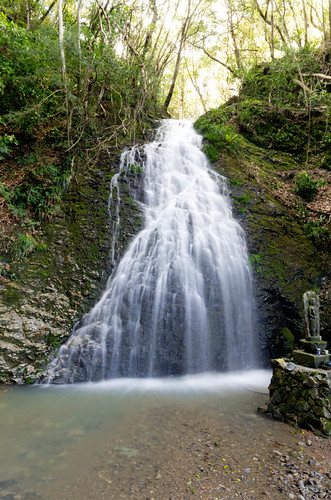龍泉の滝雄滝 2013.4.7-3