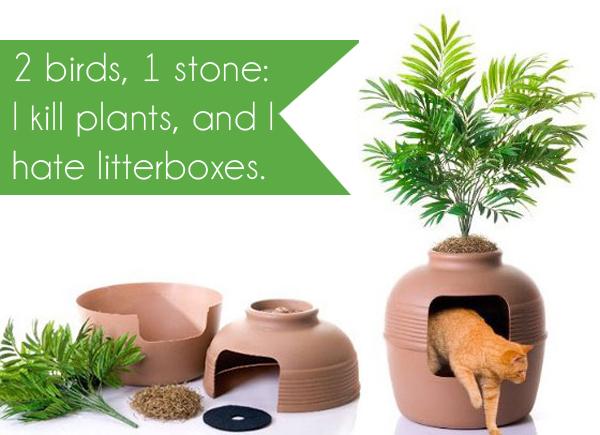 plant litter box1