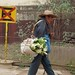 Hombre cargando alcatraces; San Pedro y San Pablo Ayutla, Región Mixes, Oaxaca, Mexico por Lon&Queta