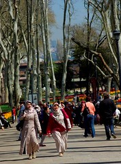 istanbul tulip festival 2013