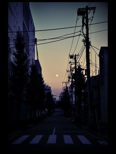Lonesome Moon over Tokyo... Les rêves nippons. by L'Ubuesque Boîte à Savon