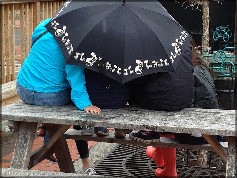 IMG_1351_umbrella
