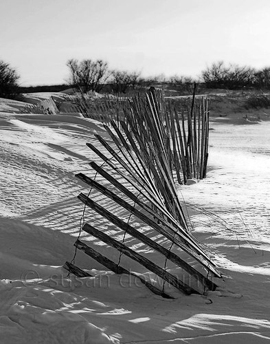 Snow Fence BW 161/365