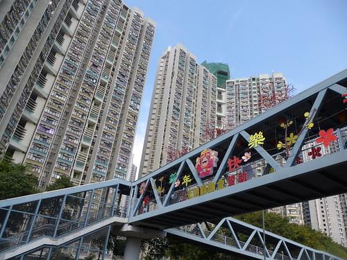 HK13-Territoires1-Ping Shan Heritage Trail (35)