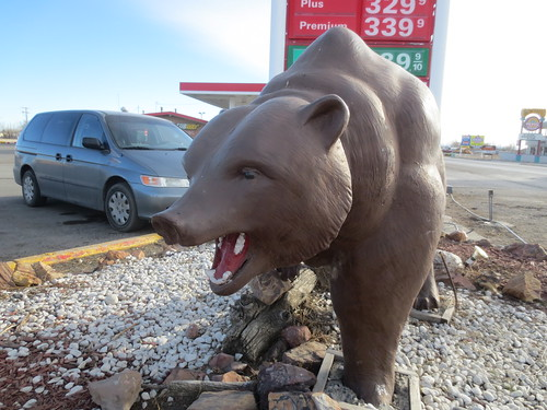 Gas station bear