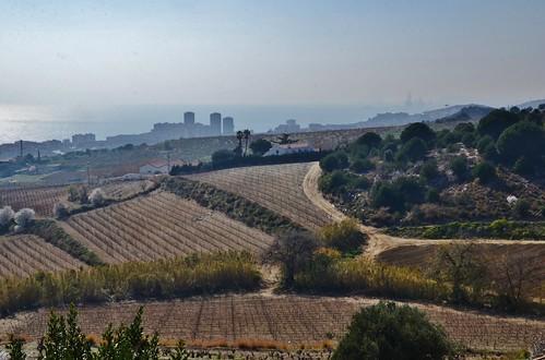 Vista de la Costa del Maresme, des d'Alella