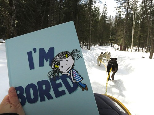 I'M BORED on a dog sledding adventure near Mont-Tremblant, Québec in Canada