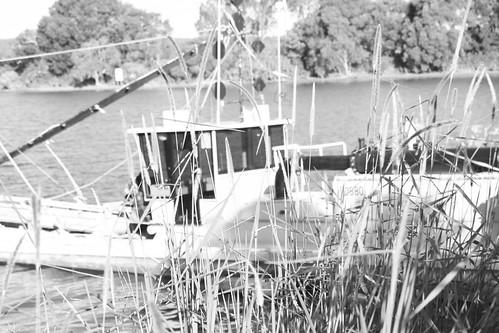IMG 9388.1 The Bellingen River Dredge