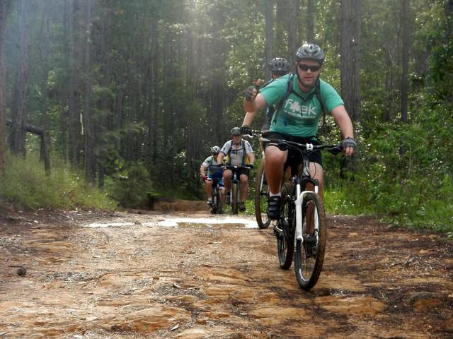 Beerburrum Trail