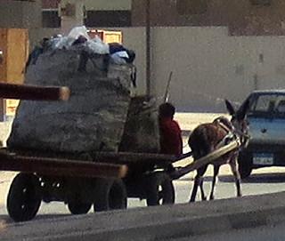 EgyptGarbage-2-1