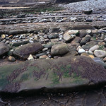 C15_Gower_2011-04_web