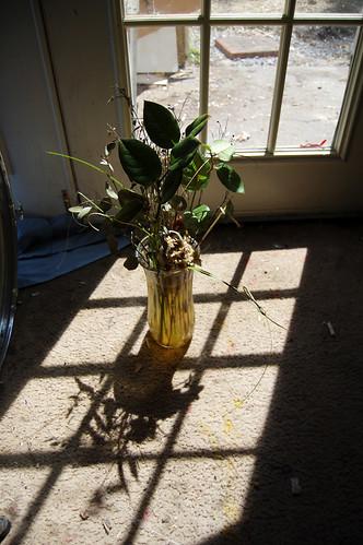 Dead Flowers (a) (Apr 2 2013)