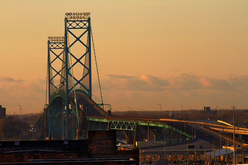 Ambassador bridge and a goose