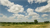 Big Sky Country Clouds