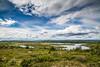 Norwegean Landscape