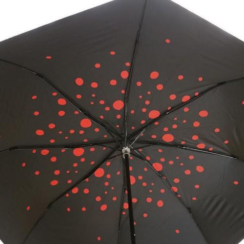 傘の内側だけに模様が入ってるのです。