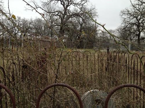cemetery grave jones jonescemetery
