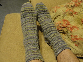David's Traveling Socks 4.2