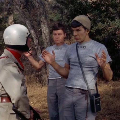 Hipster Spock