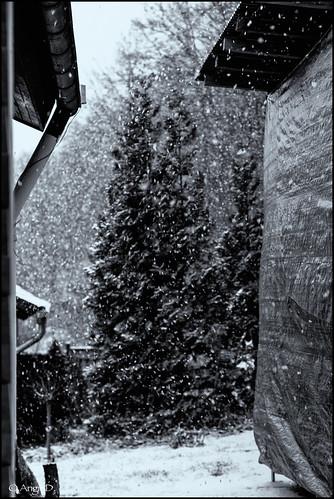Winter...an endless story :-)