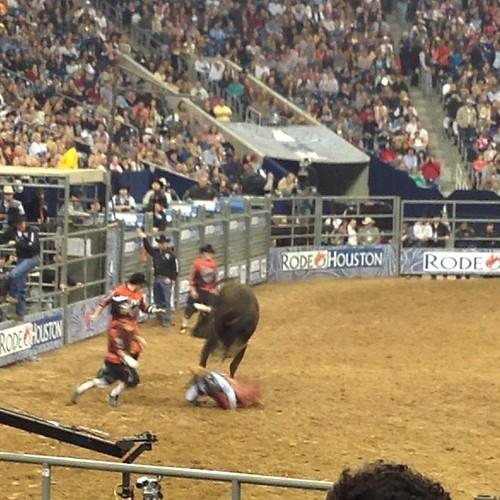 59:365 Bull Riding #hlsr