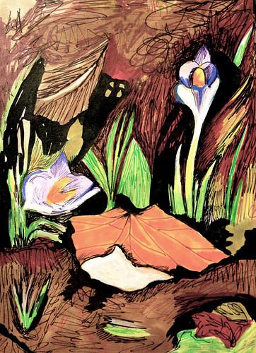 Crocus blooms by Michelle Schamis