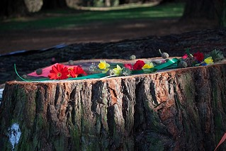 Sequoia Memorial at Pier Park