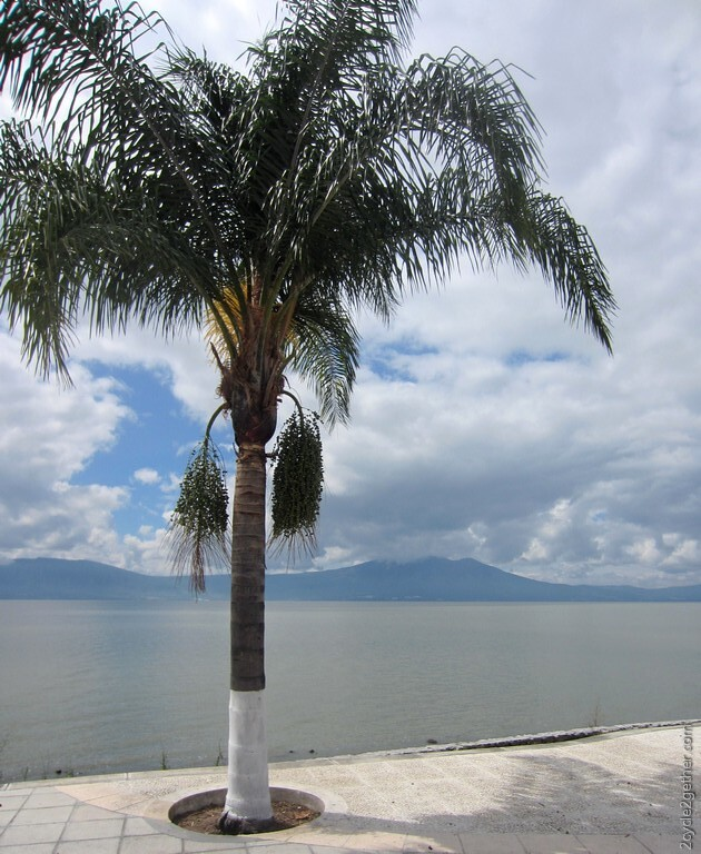 Lake Chapala, Ajijic Malecon