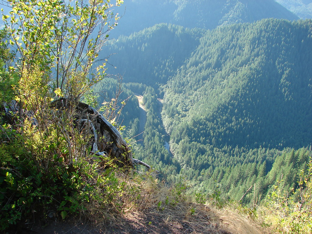View from the Elk Mountian Trail