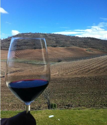Imagen de un vino tinto con los viñedos de fondo (Valladolid)