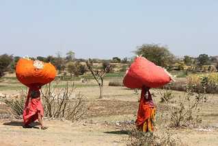 IMG_1716_women-carrying-cattle-feed