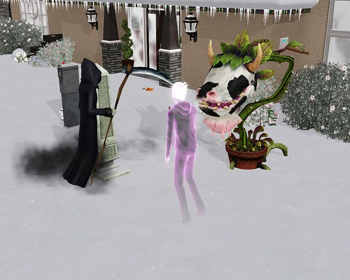 how to get a cow plant in sims