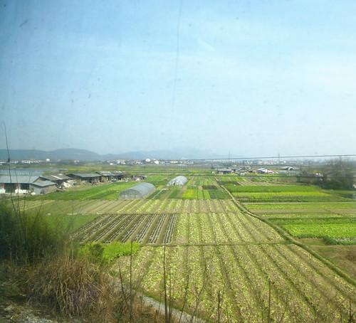 Hunan13-Changsha-Zhangjiajie-Train (54)