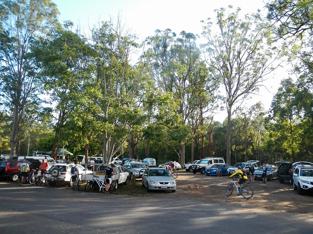 Matthew Flinders Rest Area