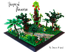 Tropical Paridise