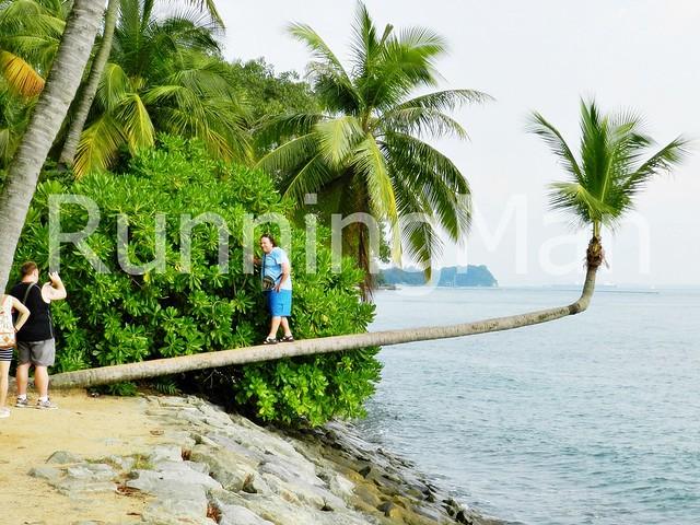 Sentosa Palawan Beach 08
