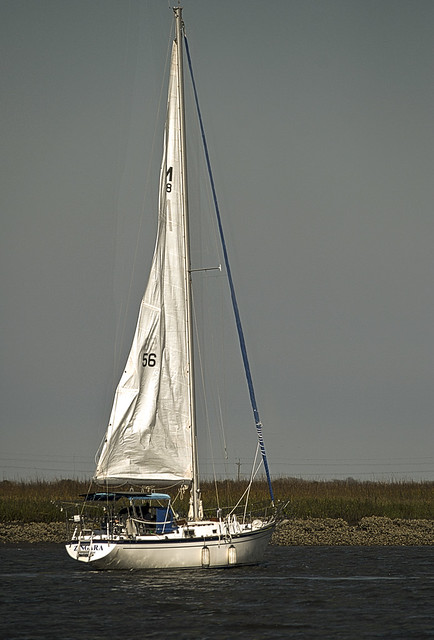 Zingara Dropping Sail