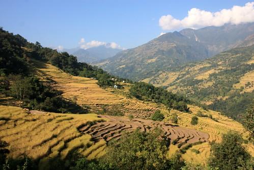 nepal mountains trekking asia asien outdoor hiking berge himalaya wandern himalayas chalise