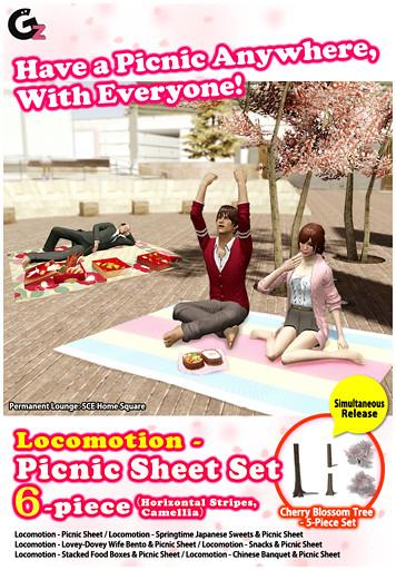 20130410_picnicsheet