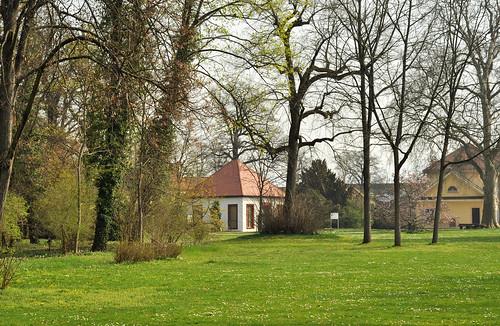 Blühender Schlosspark Neckarhausen im April