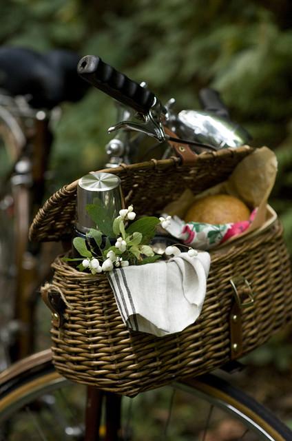 cesta y bici1