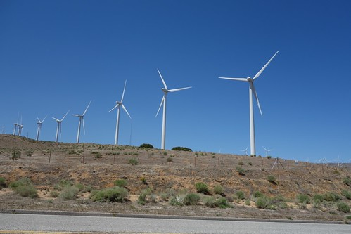Tehachapi CA wind farm