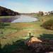 Iset river by Anton Novoselov