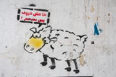 أنا مش خروف بس بحبهم