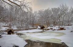 Winter at Grant Park